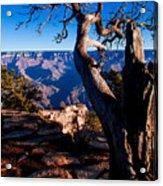 Grand Canyon 27 Acrylic Print