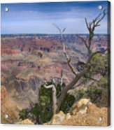 Grand Canyon 4 Acrylic Print