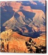 Grand Canyon 50 Acrylic Print