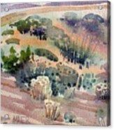 Grand Canyon Flora Study 77 Acrylic Print