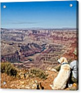 Grand Canyon Girl And Dog Acrylic Print