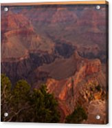 Grand Canyon Morning Light Acrylic Print