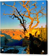 Grand Canyon National Park Winter Sunrise On South Rim Acrylic Print