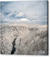 Grand Canyon Of Pa In Infrared Acrylic Print
