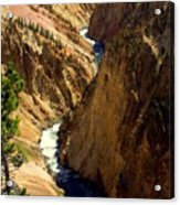 Grand Canyon Of The Yellowstone 2 Acrylic Print