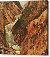 Grand Canyon Of The Yellowstone Vertical Panorama Acrylic Print
