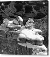 Grand Canyon Snow Black And White Photo Acrylic Print