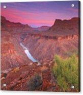 Grand Canyon Sunrise Acrylic Print by David Kiene