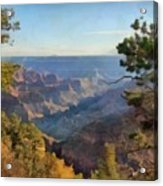 Grand Canyon View With Trees Acrylic Print