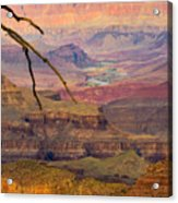 Grand Canyon Vista Acrylic Print