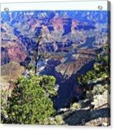 Grand Canyon14 Acrylic Print