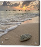 Grand Cayman Beach Coral At Sunset Acrylic Print