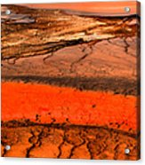 Grand Prismatic Patterns Acrylic Print