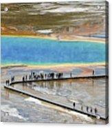 Grand Prismatic Spring Acrylic Print