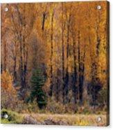 Grand Tetons Fall Acrylic Print