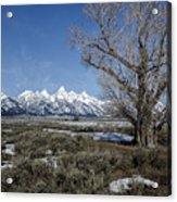 Grand Tetons From Gros Ventre Acrylic Print