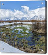 Grand Tetons From Willow Flats In Early April Acrylic Print