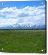 Grand Tetons Meadow Acrylic Print