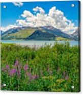 Grand Tetons Wildflowers Acrylic Print