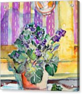 Grandmas' Violets Acrylic Print