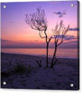 Grandview Beach Sunrise Acrylic Print