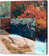 Granite Outcrop And Fall Leaves Aep3 Acrylic Print