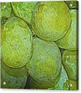 Grape Abstract Acrylic Print