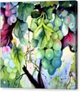 Grapes II Acrylic Print