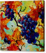 Grapes Mini Acrylic Print