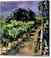 Grapes Of Niagara Acrylic Print
