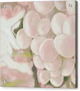 Grapes Powder Pink Acrylic Print