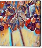 Grapevine Art Acrylic Print