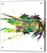 Graphics 1614 Acrylic Print