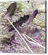 Grass #3 Acrylic Print