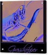 Grasshopper Poster Acrylic Print