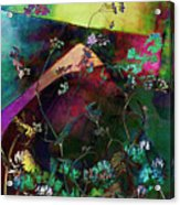 Grassland Series No. 6 Acrylic Print