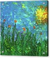 Grassland With Orange Flowers Acrylic Print