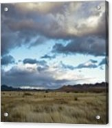 Grasslands Near Portal Acrylic Print