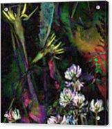 Grasslands Series No. 7 Acrylic Print