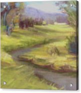 Grassy Meadow Acrylic Print