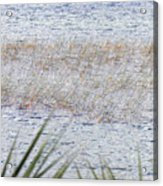 Grassy Waters Acrylic Print