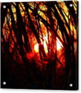 Gravity Inversion At Sunset Acrylic Print