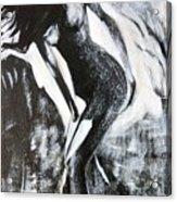 Gray Desert Acrylic Print