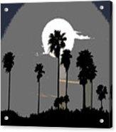 Gray Palms Acrylic Print