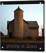 Grazing At Dawn Acrylic Print