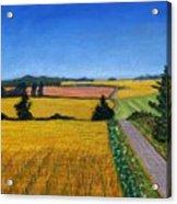 Great Bedwyn Wheat Fields Painting Acrylic Print