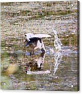 Great Blue Fishing Acrylic Print