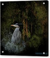 Great Blue Heron On The River Acrylic Print
