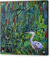 Great Blue Acrylic Print