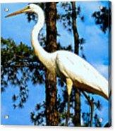Great Heron Art Acrylic Print